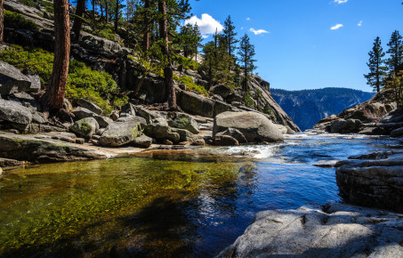 Upper Yosemite Falls - the river and forest  c.DurkTalsma