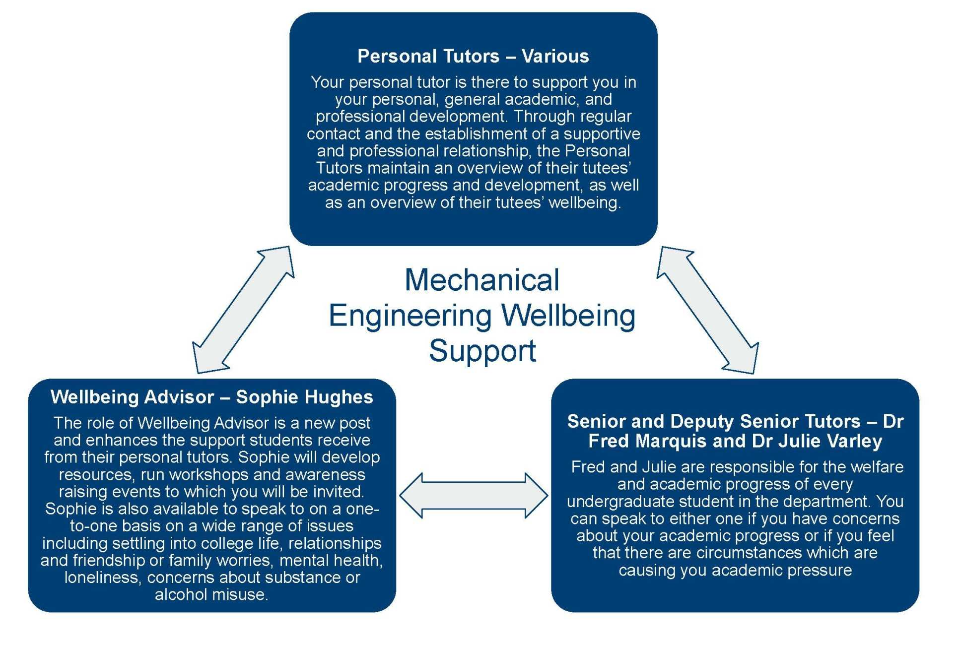 Wellbeing support graph