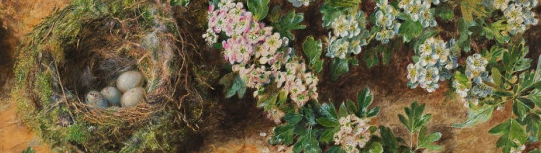 Painting by William Henry Hunt of flowers