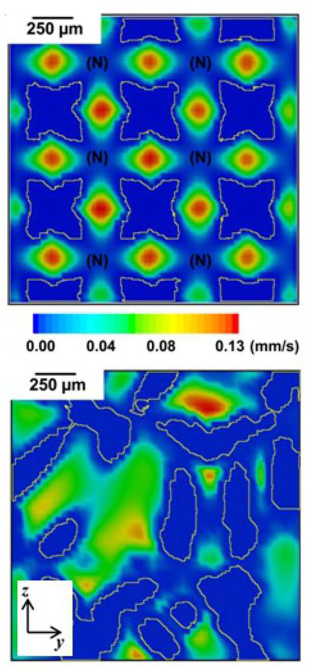 2D cross-sectional views of local flow velocity distributions in porous Ti implant structures.