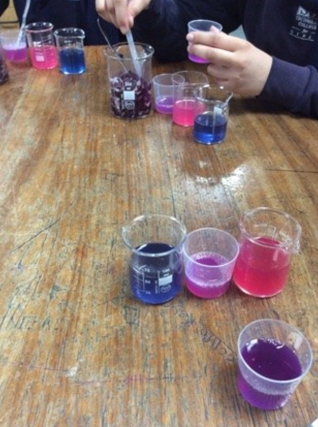 beakers filled with different brightly coloured liquids and substances