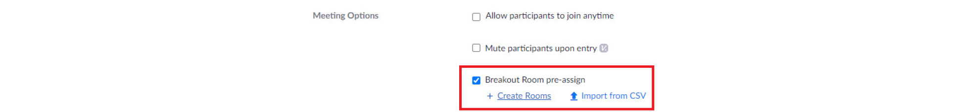 Breakout rooms pre-assign