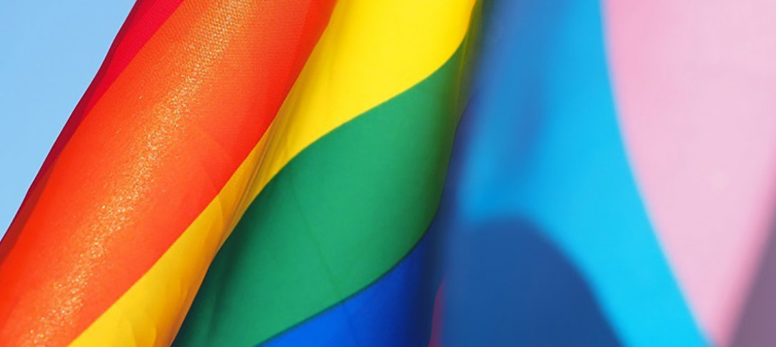 LGBT+ f