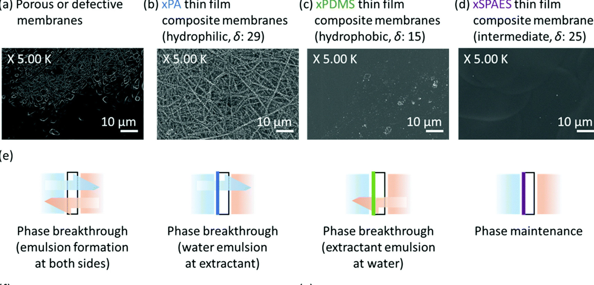 Image showing the different types of biofuel membrane