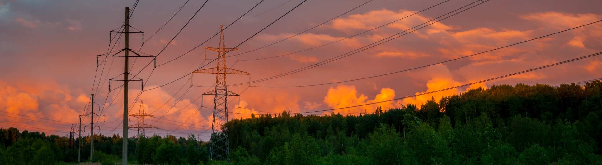 Pylons at dusk