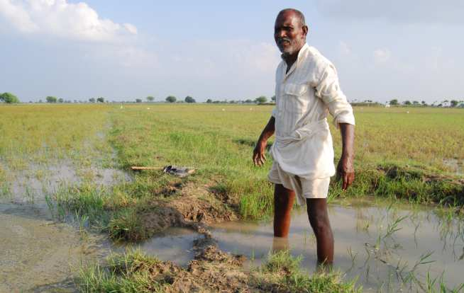 Farmer channelling water from a nearby canal into his fields