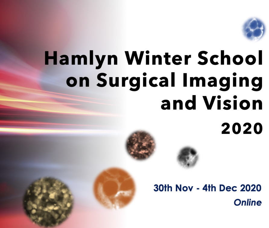 Hamlyn Winter School on Surgical Imaging and Vision 2020