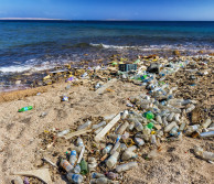 Beach littered with plastic pollution
