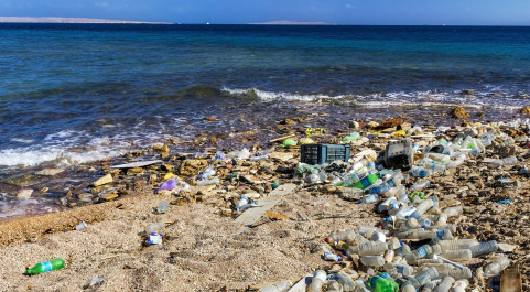 coastline littered with plastic rubbish