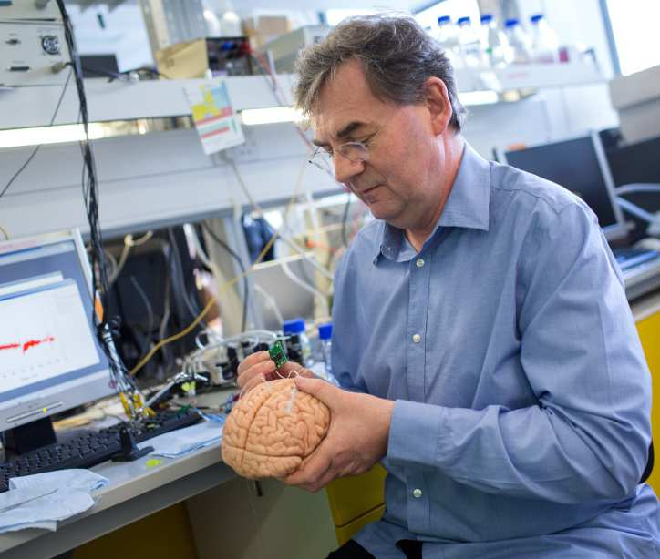 Modelling the human brain