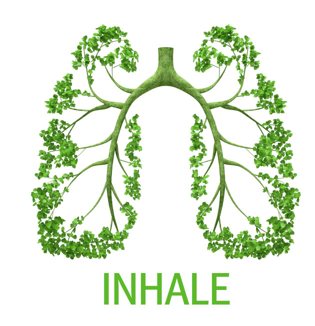 Green lung in form of tree with word INHALE