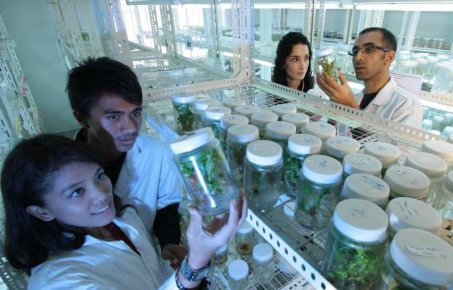 People in research lab looking at jars