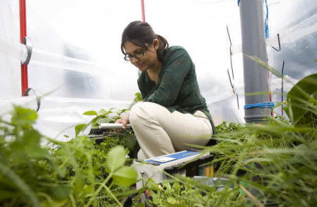 student crouching in greenhouse