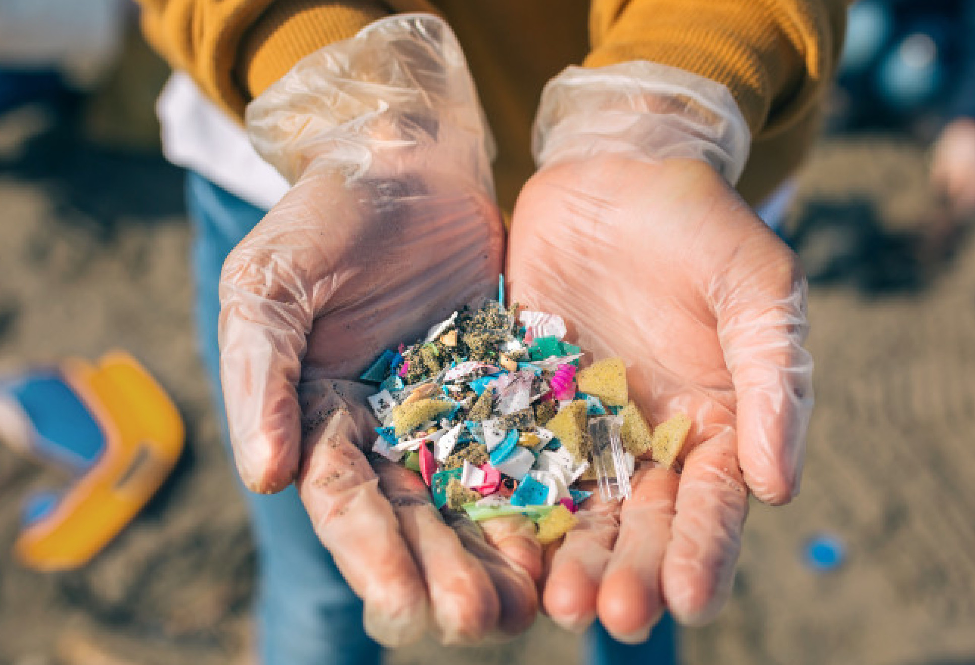 Microplastics collected on a beach