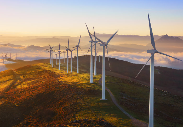 Green bond use signals growing environmental focus says Imperial report