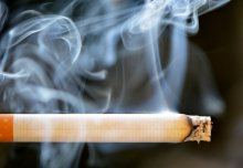 WHO World No Tobacco Day: why the key to quitting smoking could lie in our guts