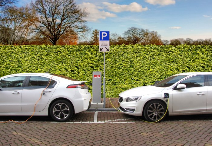 Two electric cars charging in front of a green hedge