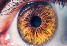 Glaucoma hope from turmeric eye drops