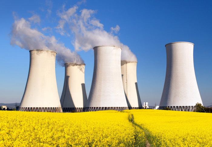 Five grey buildings of a nuclear power station stand at the end of a yellow field of flowers, with a path leading towards them. Four of the buildings have vapour coming from the top.