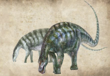 New dinosaur species named 'amazing dragon from Lingwu' discovered in China