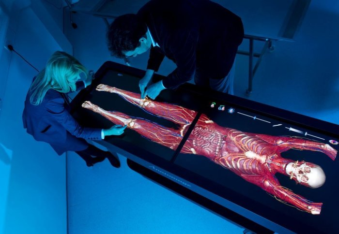 Innovations such as the Anatomage Table are at the cutting edge of medical education at the College