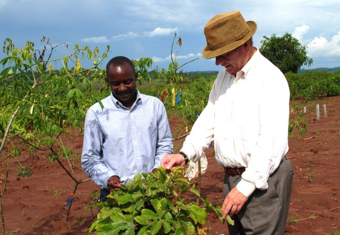 Working with farmers growing lime trees in Uganda