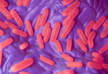 Bacterial 'sleeper cells' evade antibiotics and weaken defence against infection
