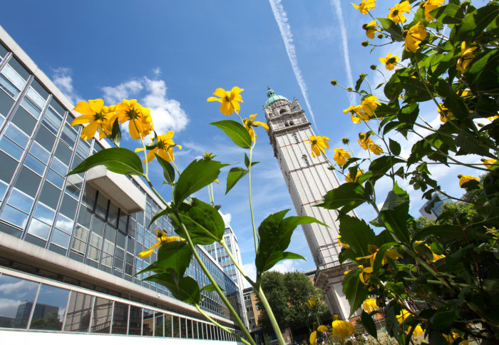 Queen's Tower viewed from below with yellow flowers in the foreground.