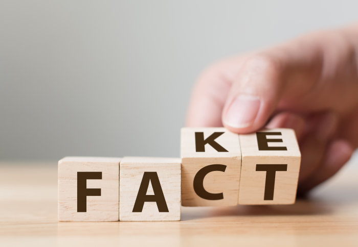 Letter blocks that spell our 'fact' and 'fake'