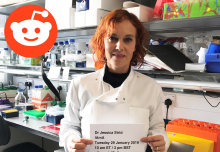 Cancer immunologist hosts live Q&A on Reddit