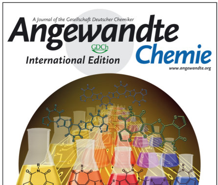 Jan 2019 - Article in Angew. Chem. Published