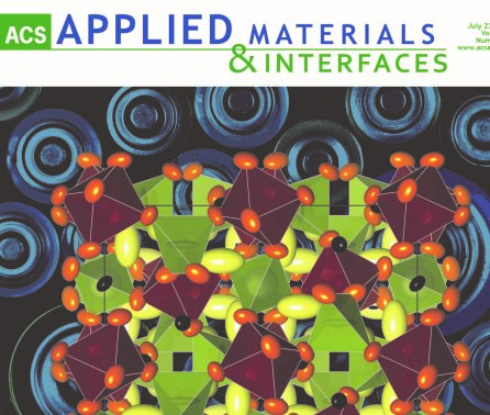 Apr 2019 - Article in ACS Applied Materials and Interfaces Published