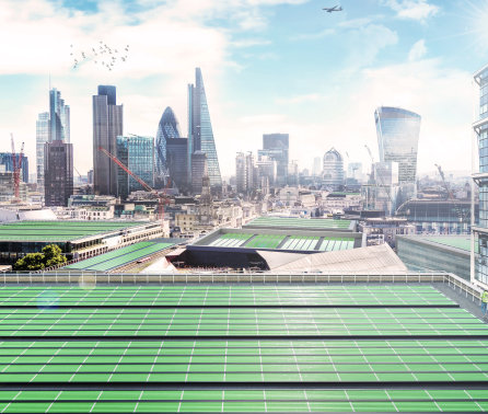 World's first 'BioSolar Leaf' to tackle air pollution in White City