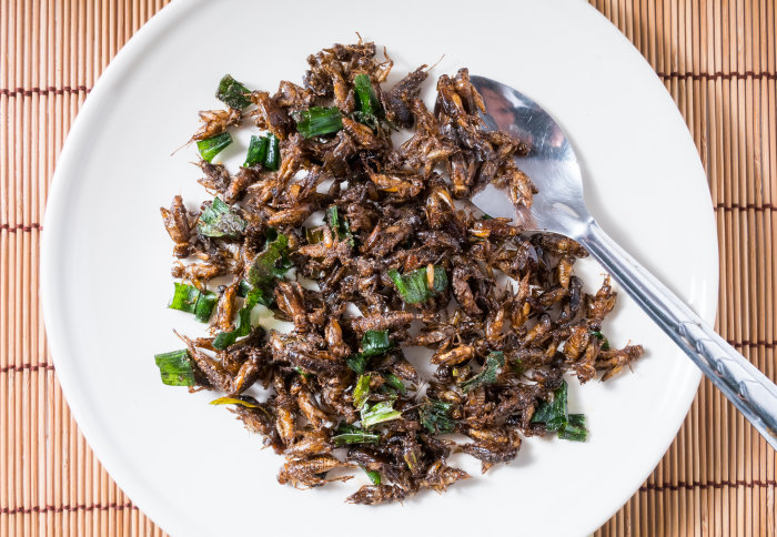 A plate of fried insects