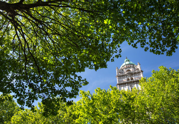Queens tower and trees