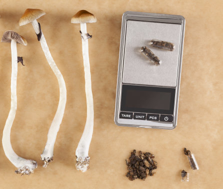 Science of microdosing psychedelics 'remains patchy and anecdotal', says review