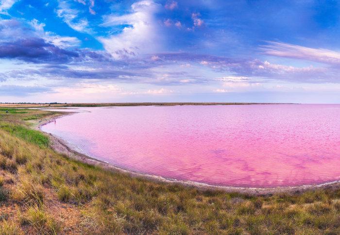 Panorama of a pink lake