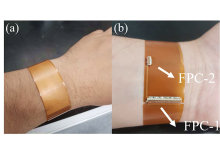 A Novel Flexible Wrist-Worn Thermotherapy and Thermoregulation Device
