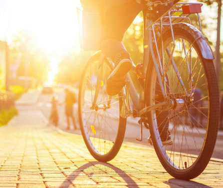 Walking or cycling to work associated with reduced risk of early death