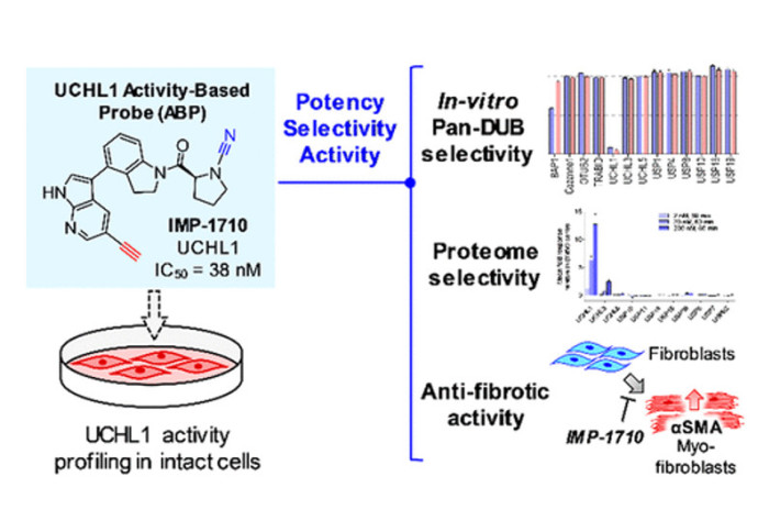 Discovery of a potent and selective covalent inhibitor of UCHL1