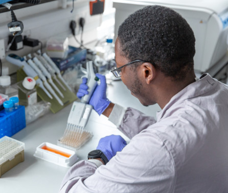 COVID-19 Response Fund: Imperial announces latest grants to tackle pandemic