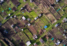 Thousands chasing London allotments as supply dwindles