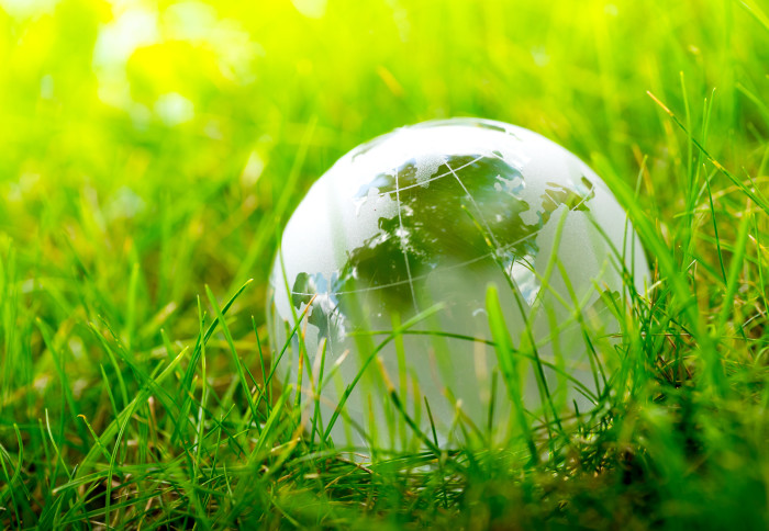 A glass globe nestled in grass