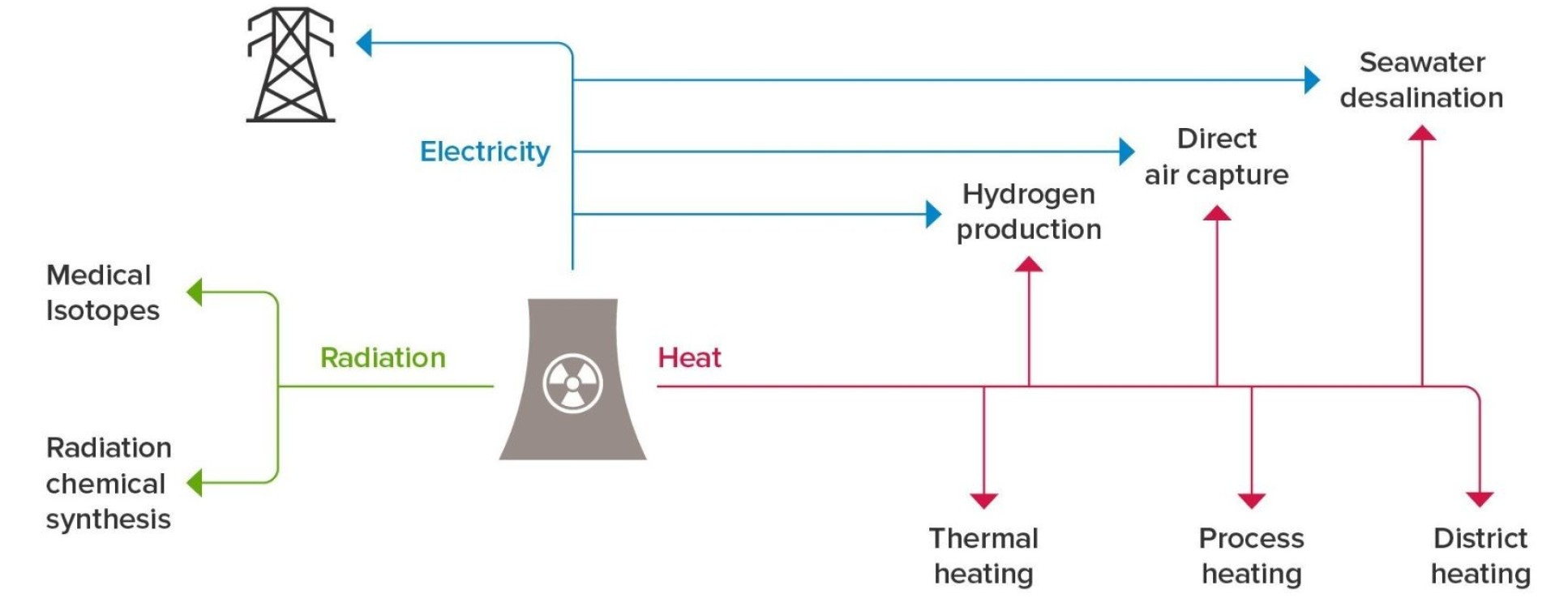 Diagram showing uses for nuclear cogeneration