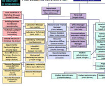 Image of the bioengineering professional services staff organisational chart