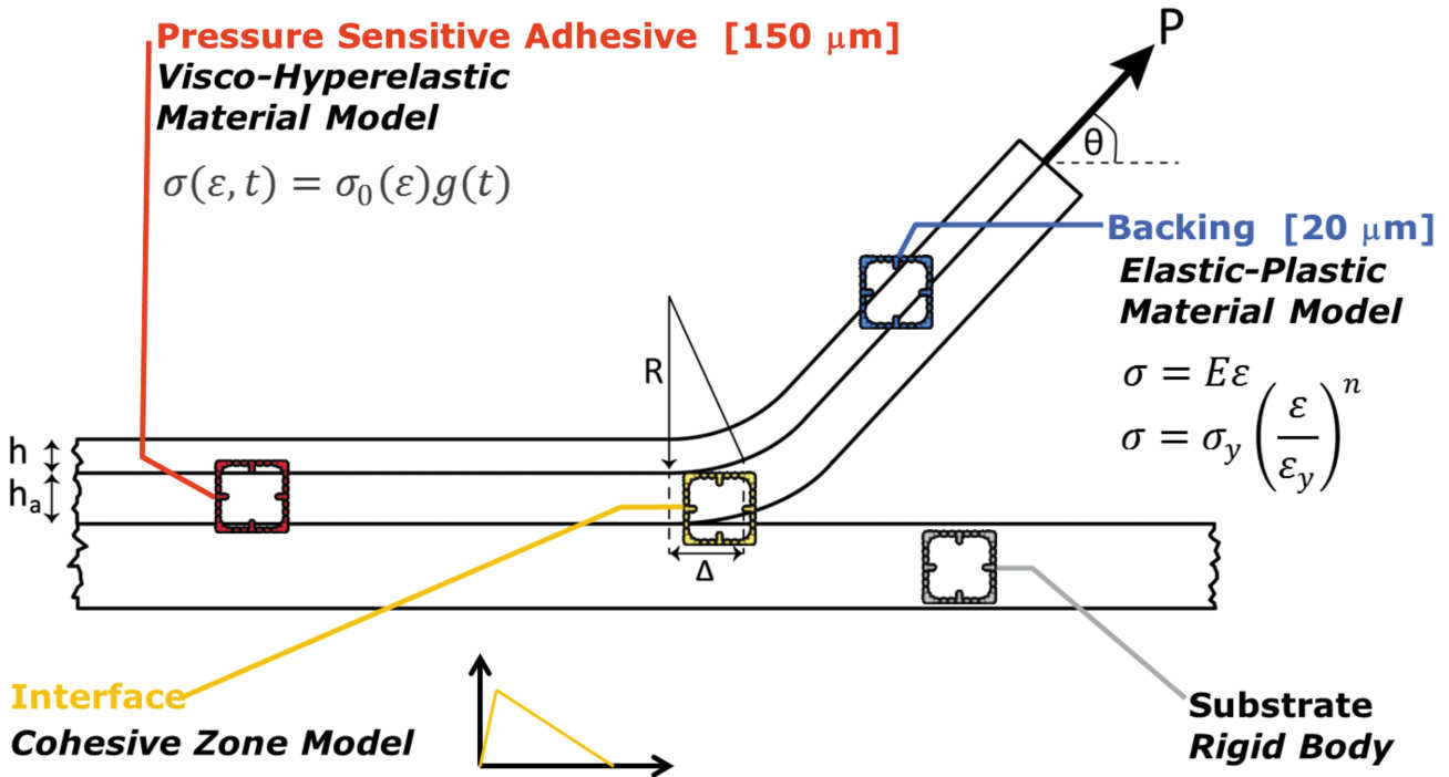 Shear Dynamic Mechanical Analysis of a pressure-sensitive adhesive and a schematic of the peeling model with the four main components