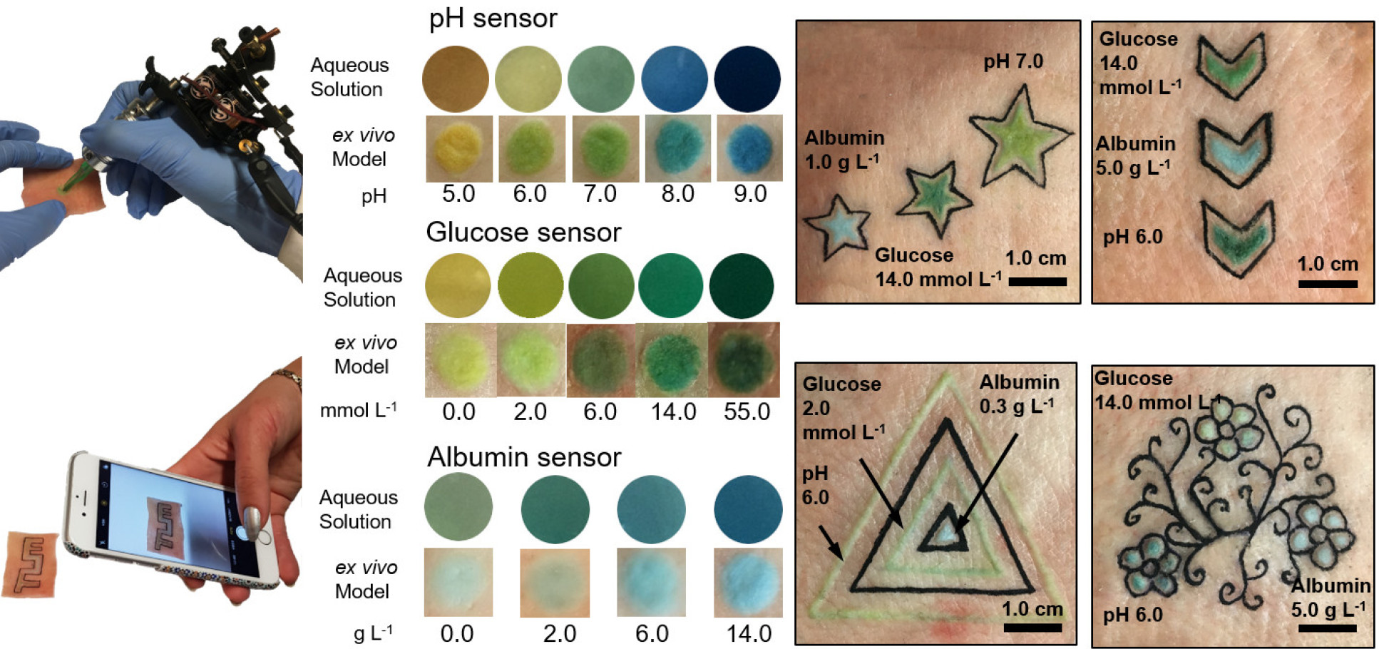 Dermal sensors and their applications.