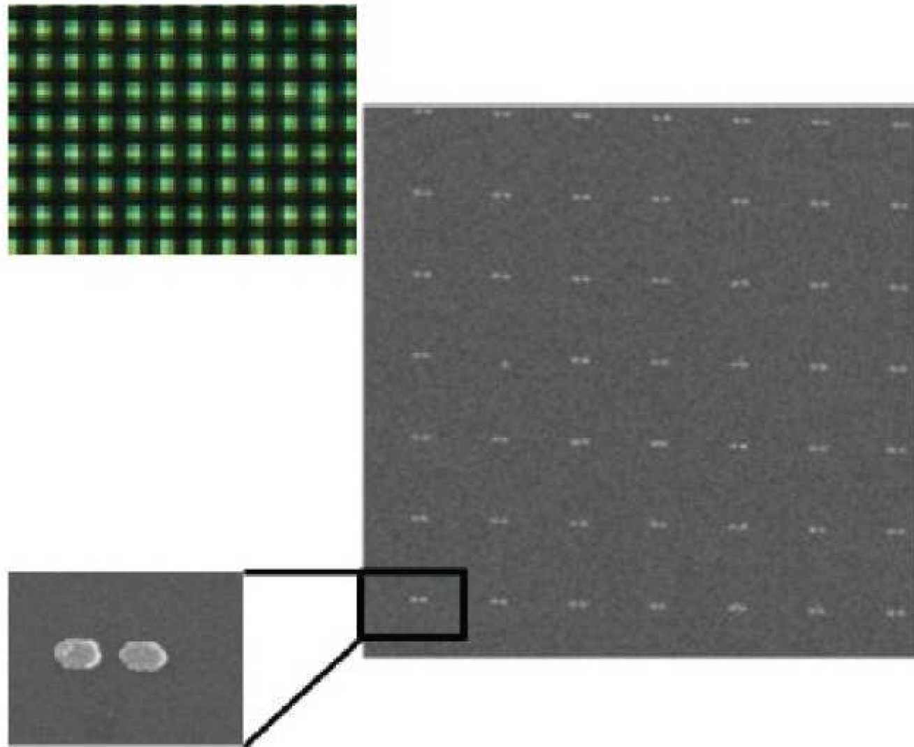 Electron microscope and optical scattering images of bow tie nanoantennas designed for light concentration of the colour green