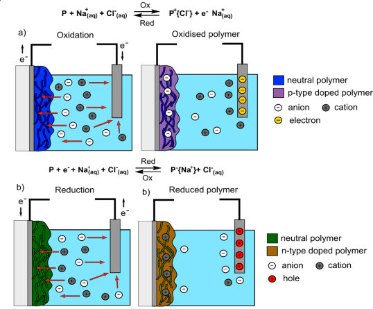 Redox-reactions of the polymers in aqueous electrolytes