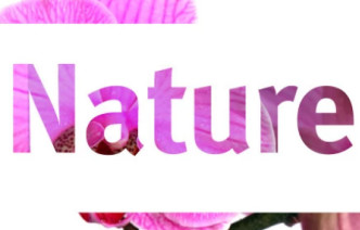 The word 'Nature'